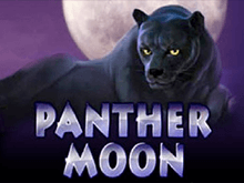 Panther Moon в Вулкане Платинум