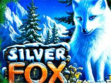 Автомат Silver Fox в Вулкане Платинум