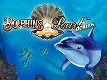 Играть без регистрации в игру Dolphin's Pearl Deluxe