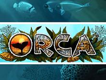 Новые игры в Вулкан Платинум — Orca