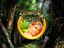Демо без регистрации Secret Forest