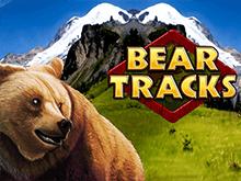 Играть в Bear Tracks на зеркале Вулкан