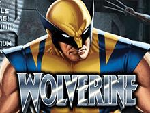 Выиграйте крупную сумму в Wolverine!