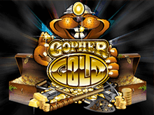 Игровой процесс топовой игры Золото Суслика