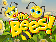 The Bees – онлайн-гэмблинг тематическим автоматом