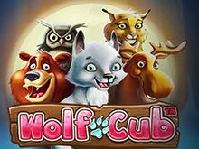 Wolf Cub – играть онлайн в азартную игру