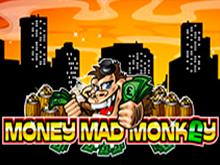 Для опытных игроков на площадке интернет-казино Money Mad Monkey