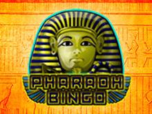 Азартная игра с выплатами в интернет-казино Pharaoh Bingo